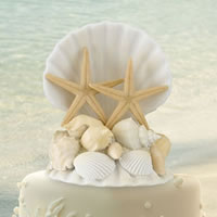 sea shell cake topper for a great addition to your island cake