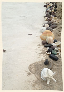 ocean rock and sea shell ailse for weddings in the Virgin Islands